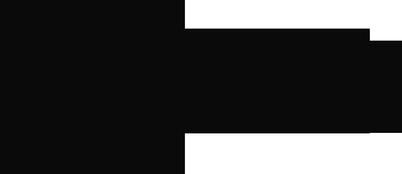 Drokpa Tibetan Mastiff